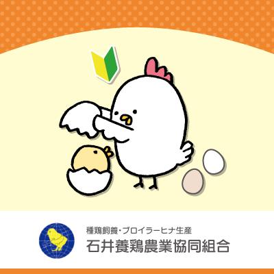 養鶏農場スタッフ