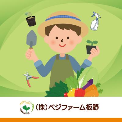 ビニールハウス内での野菜苗の管理